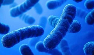 Бактерицидно действие на сребърната вода